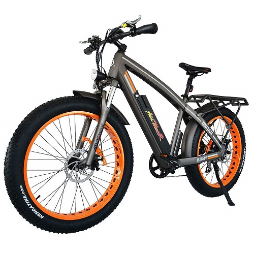 Addmotor MOTAN Electric Bicycle